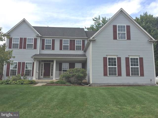 21073 Carthagena Court, ASHBURN, VA 20147 (#VALO392822) :: The Greg Wells Team