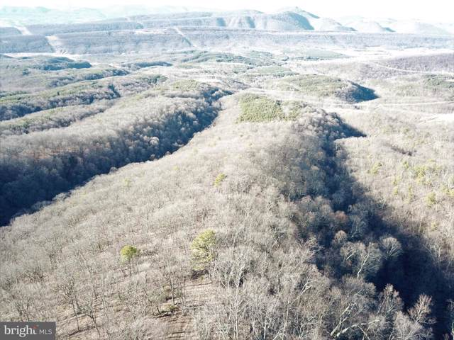 Lot 342 Nathaniel Mountain Road, MOOREFIELD, WV 26836 (#WVHD105424) :: AJ Team Realty