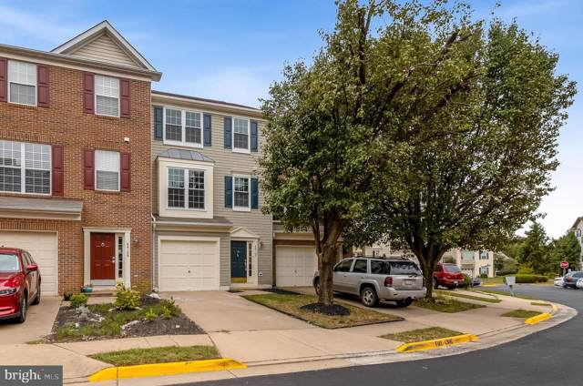 44107 Paget Terrace, ASHBURN, VA 20147 (#VALO393272) :: The Greg Wells Team