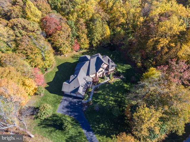 40828 Grenata Preserve Place, LEESBURG, VA 20175 (#VALO393998) :: Keller Williams Pat Hiban Real Estate Group