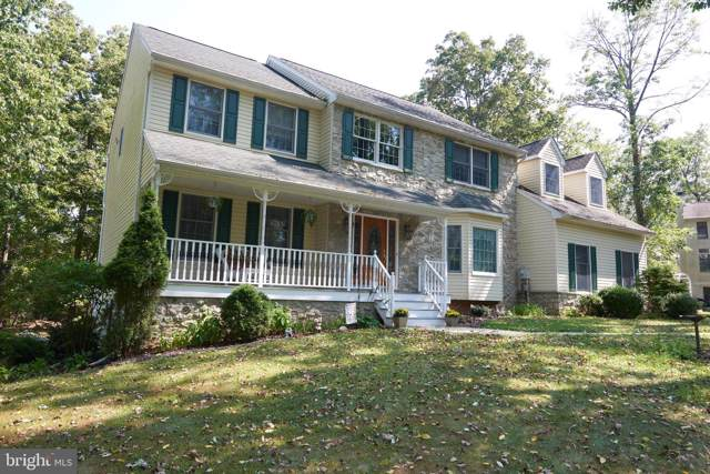 220 Hollowbush Lane, PERKIOMENVILLE, PA 18074 (#PAMC624164) :: REMAX Horizons