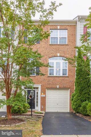 24724 Clock Tower Square, ALDIE, VA 20105 (#VALO395946) :: Great Falls Great Homes