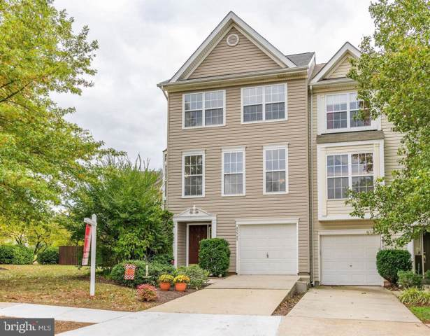 45545 Clear Spring Terrace, STERLING, VA 20165 (#VALO396370) :: The Greg Wells Team