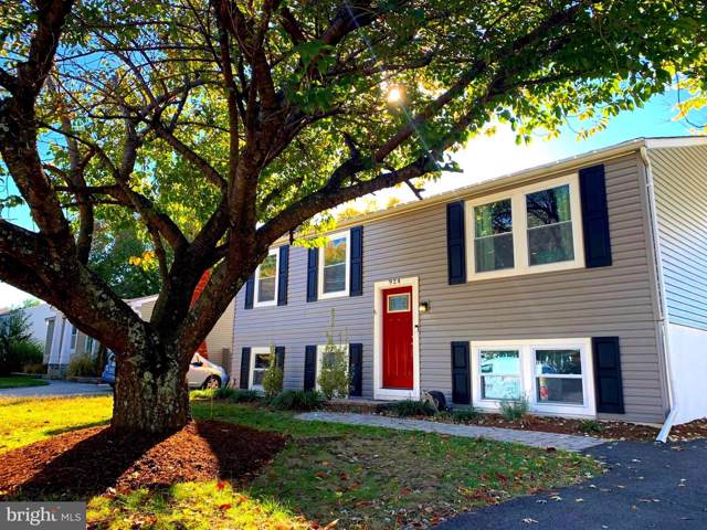 924 Mago Vista Road, ARNOLD, MD 21012 (#MDAA417532) :: The Maryland Group of Long & Foster