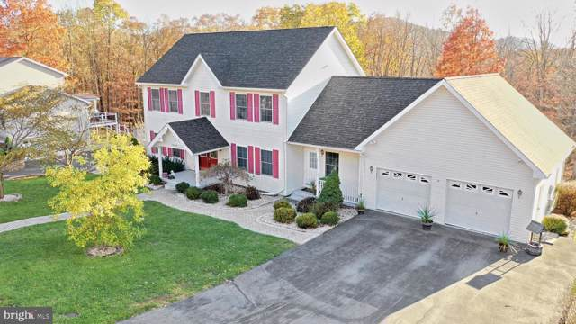 16902 Mountain Club Avenue, RAWLINGS, MD 21557 (#MDAL133150) :: The MD Home Team
