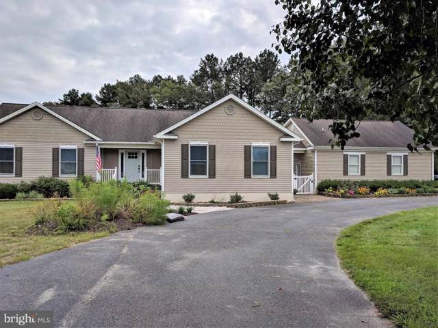 8846 Peerless Road, WHALEYVILLE, MD 21872 (#MDWO110652) :: Homes to Heart Group