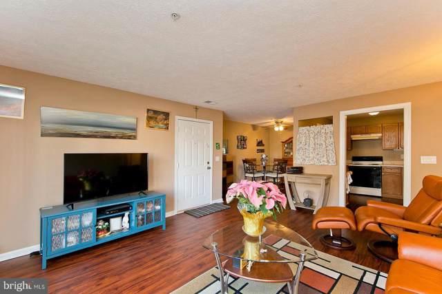 117-1 Brookland Terrace, WINCHESTER, VA 22602 (#VAFV155178) :: Viva the Life Properties