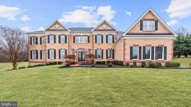 17726 Tobermory Place, LEESBURG, VA 20175 (#VALO401576) :: The Miller Team
