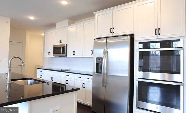 43095 Wynridge Drive #307, BROADLANDS, VA 20148 (#VALO401674) :: Erik Hoferer & Associates