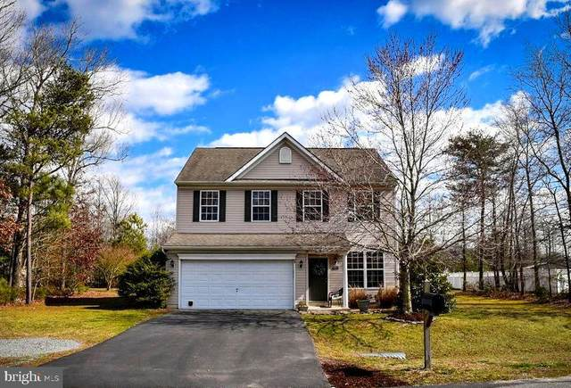 23175 Pine Run, MILLSBORO, DE 19966 (#DESU156006) :: Atlantic Shores Sotheby's International Realty