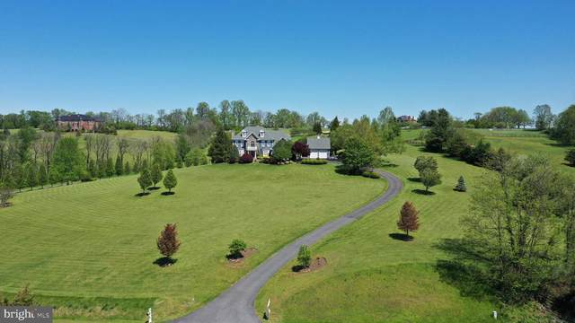 16080 Gold Cup Lane, PAEONIAN SPRINGS, VA 20129 (#VALO404088) :: Cristina Dougherty & Associates