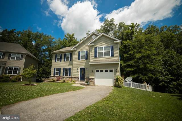 126 S Stream Drive, ELKTON, MD 21921 (#MDCC168448) :: ExecuHome Realty