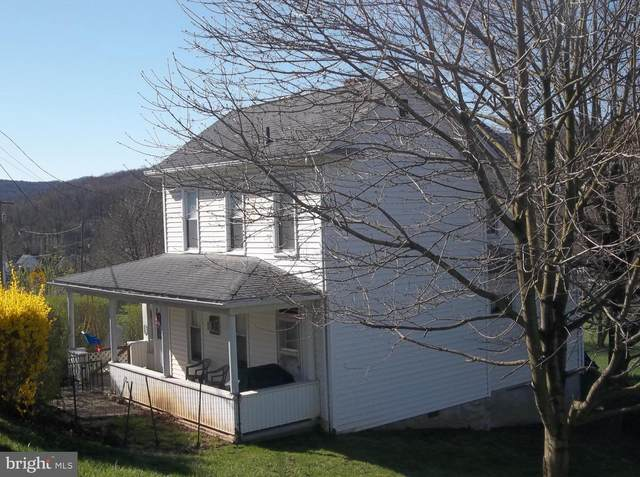 10015 Parkersburg Road, FROSTBURG, MD 21532 (#MDAL133952) :: Gail Nyman Group