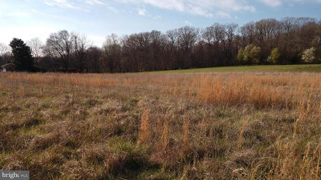 Lot 3 Patuxent River Road, DAVIDSONVILLE, MD 21035 (#MDAA429886) :: Keller Williams Flagship of Maryland