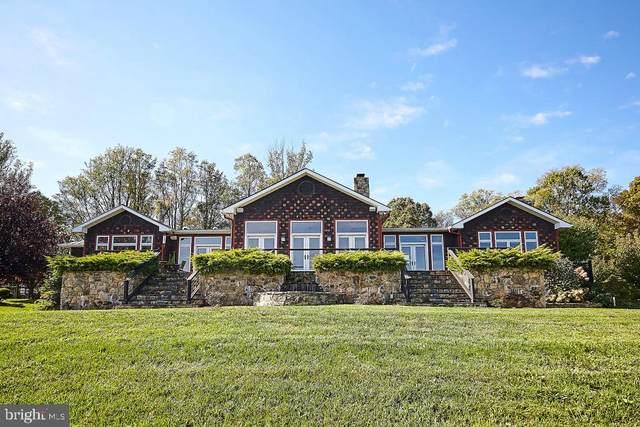 59 Riley Hollow Road, HUNTLY, VA 22640 (#VARP107250) :: The Riffle Group of Keller Williams Select Realtors