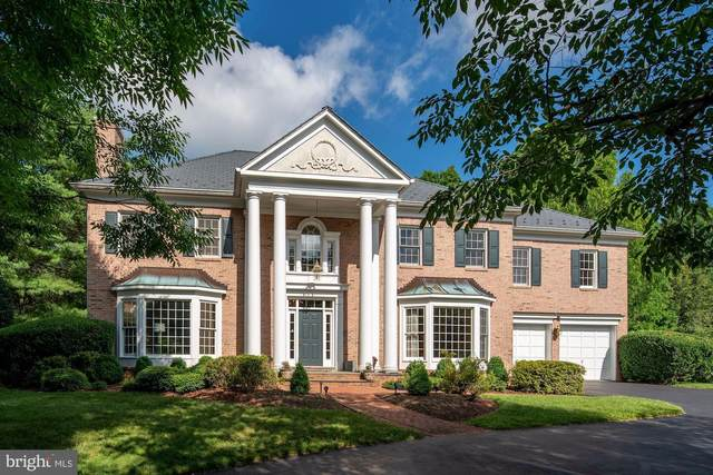 8404 Crimson Leaf Court, POTOMAC, MD 20854 (#MDMC705482) :: Jennifer Mack Properties