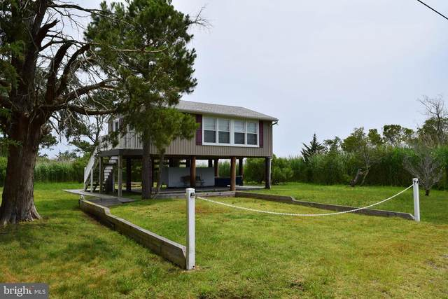 6573 Taylor Landing Road, GIRDLETREE, MD 21829 (#MDWO113584) :: RE/MAX Coast and Country
