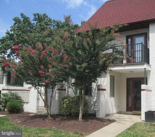 1-B Queen Victoria Court, CHESTER, MD 21619 (#MDQA144796) :: Great Falls Great Homes