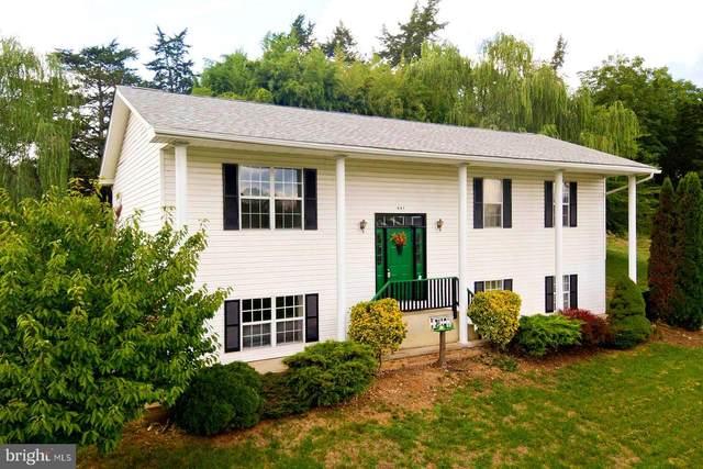 441 Dickerson Lane, STRASBURG, VA 22657 (#VASH119916) :: John Lesniewski   RE/MAX United Real Estate