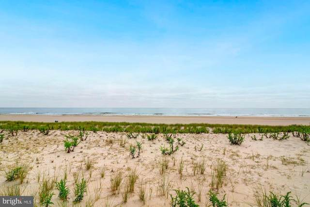 12415 Ocean, LONG BEACH TOWNSHIP, NJ 08008 (MLS #NJOC402650) :: The Sikora Group