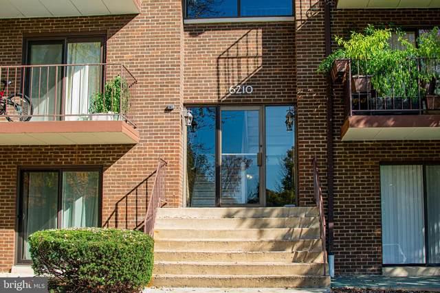 6210 Edsall Road #402, ALEXANDRIA, VA 22312 (#VAAX252858) :: Fairfax Realty of Tysons