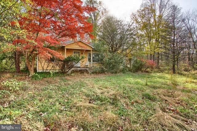 2095 Old Woods Road, GREEN LANE, PA 18054 (#PABU510722) :: RE/MAX Main Line