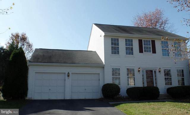 17531 Falls Place, ROUND HILL, VA 20141 (#VALO424942) :: The Redux Group
