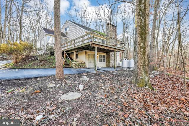 7062 Ely Road, NEW HOPE, PA 18938 (#PABU516140) :: Certificate Homes