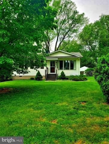 204 Sycamore Street, MIDDLEBURG, VA 20117 (#VALO426576) :: Dart Homes