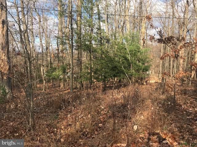 322 Commanche Drive, AUBURN, PA 17922 (#PASK133556) :: The Joy Daniels Real Estate Group