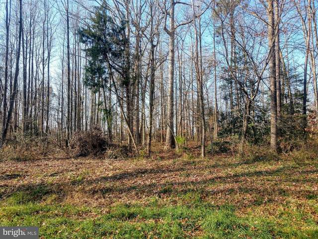 Lot 44 Hickory Cove Road, HURLOCK, MD 21643 (#MDDO126532) :: EXIT Realty Enterprises
