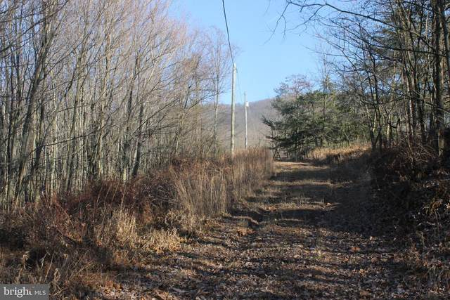 27.53 Acres Hickory Tree Rd, MOOREFIELD, WV 26836 (#WVHD106514) :: The Redux Group