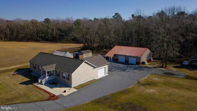 30082 Vines Creek Road, DAGSBORO, DE 19939 (#DESU177782) :: CoastLine Realty