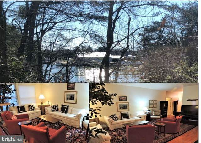 223 Driftwood Lane, SOLOMONS, MD 20688 (#MDCA181304) :: Realty One Group Performance