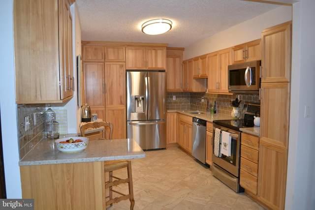 5904 Mount Eagle Drive #1415, ALEXANDRIA, VA 22303 (#VAFX1188076) :: Corner House Realty