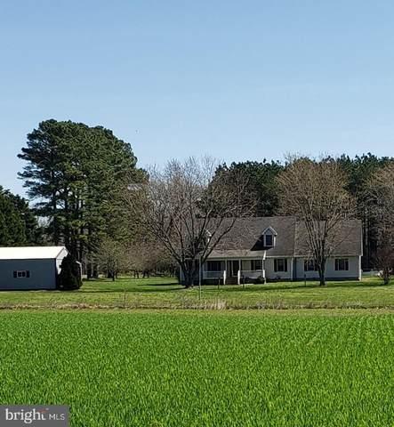 2971 Money Make Road, TRAPPE, MD 21673 (MLS #MDTA140720) :: Maryland Shore Living | Benson & Mangold Real Estate