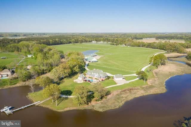 28589 Brick Row Drive, OXFORD, MD 21654 (MLS #MDTA140774) :: Maryland Shore Living | Benson & Mangold Real Estate