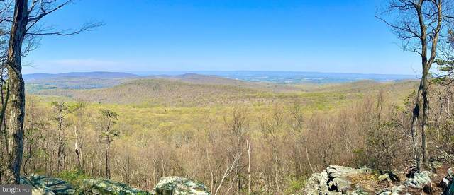 North Tract Tower Road, DILLSBURG, PA 17019 (#PACB134050) :: The Joy Daniels Real Estate Group