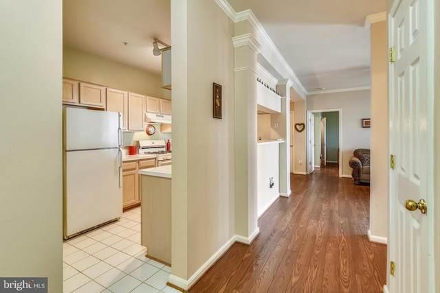 46608 Drysdale Terrace #202, STERLING, VA 20165 (#VALO436830) :: Ram Bala Associates | Keller Williams Realty