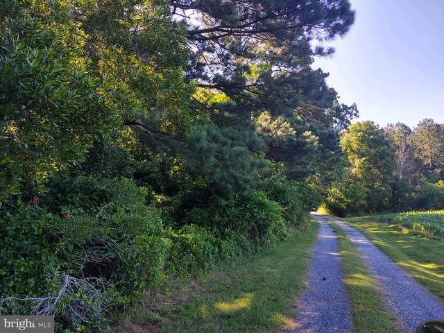 0 Davis Road, MARION STATION, MD 21838 (#MDSO104850) :: The Sky Group