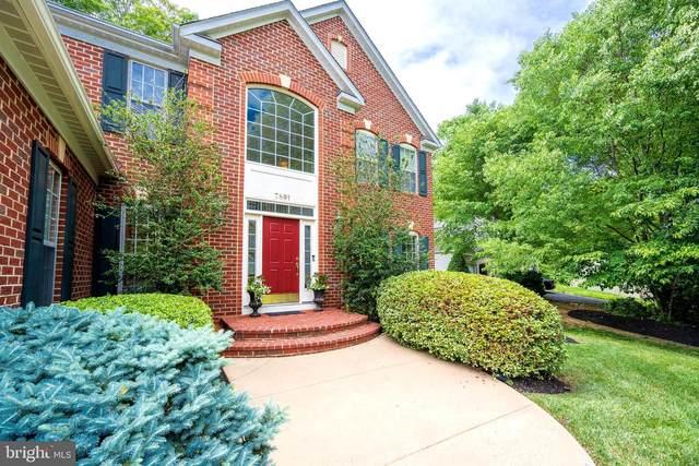 7891 English Street, MANASSAS, VA 20112 (#VAPW524768) :: The Riffle Group of Keller Williams Select Realtors