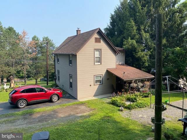 161 S Market Street, ELIZABETHVILLE, PA 17023 (#PADA134250) :: Better Homes Realty Signature Properties