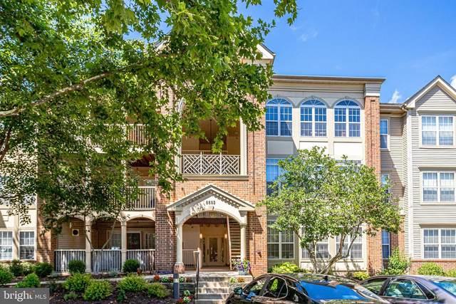6603-F Thackwell F, ALEXANDRIA, VA 22315 (#VAFX2003616) :: Debbie Dogrul Associates - Long and Foster Real Estate