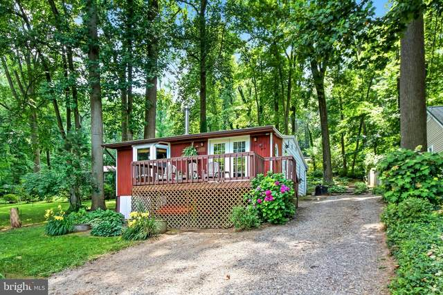 288 River Road, AIRVILLE, PA 17302 (#PAYK2001754) :: Flinchbaugh & Associates