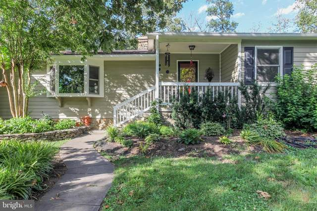20250 Woodtrail Road, ROUND HILL, VA 20141 (#VALO2002860) :: The MD Home Team