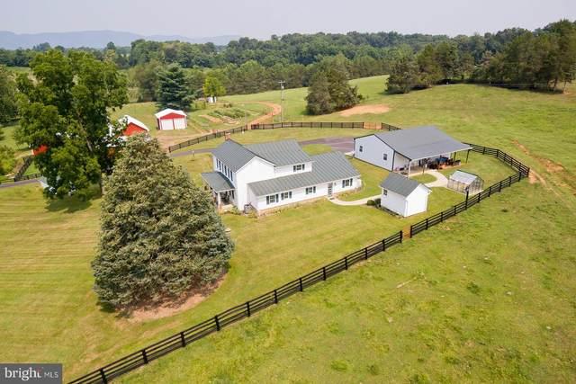 517 Buck Mountain Road, BENTONVILLE, VA 22610 (#VAWR2000358) :: Debbie Dogrul Associates - Long and Foster Real Estate