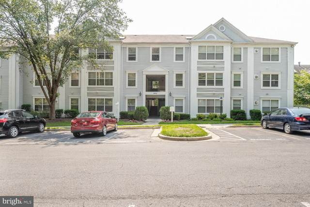 14101 Fall Acre Court 12-22, SILVER SPRING, MD 20906 (#MDMC2006560) :: Pearson Smith Realty