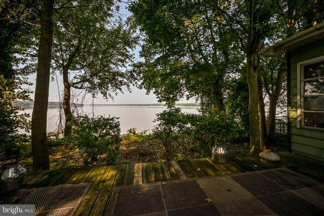 93 Wood Duck Lane, ELKTON, MD 21921 (#MDCC2000924) :: Dawn Wolf Team