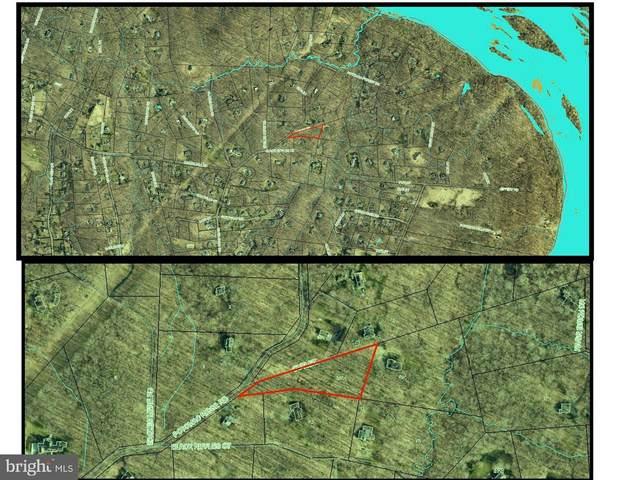 9203 Potomac Ridge Road, GREAT FALLS, VA 22066 (#VAFX2015166) :: Debbie Dogrul Associates - Long and Foster Real Estate