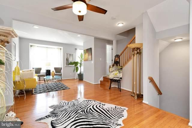 20241 Brookview Square, ASHBURN, VA 20147 (#VALO2006074) :: Dart Homes